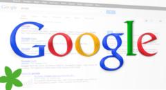 Google Snippets klein